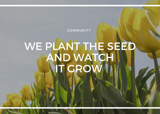 WE PLANT THE SEED AND WATCH IT GROW.