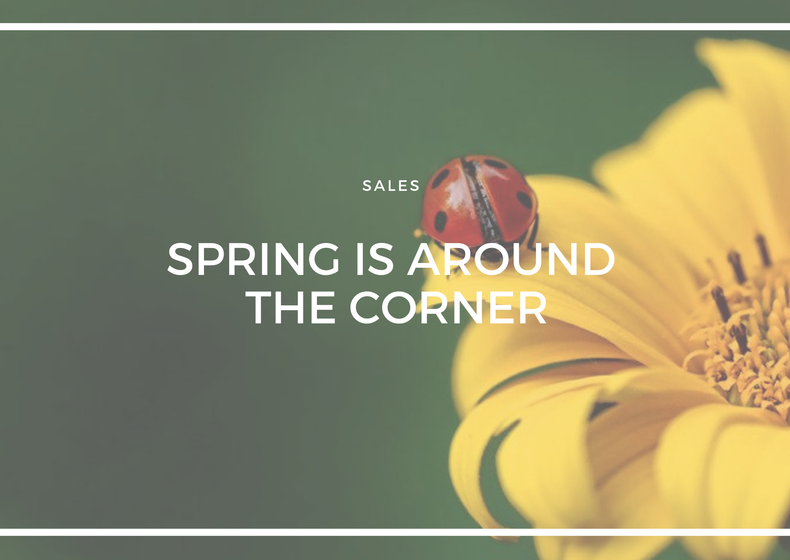 GETTING YOUR HOME IN TIP TOP SHAPE FOR THE SPRING SALES PERIOD