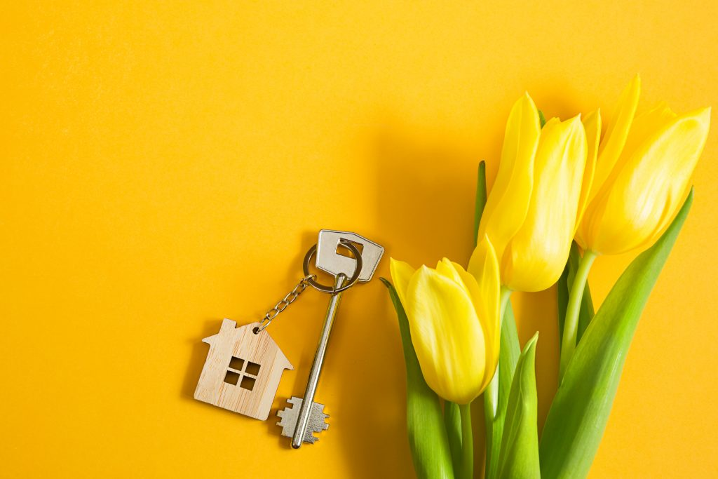 HOW WE CAN HELP YOU LEVERAGE THE SPRING MARKET?